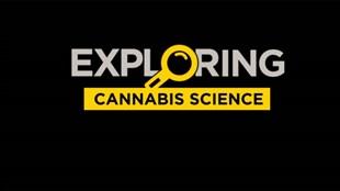 Exploring Cannabis Science