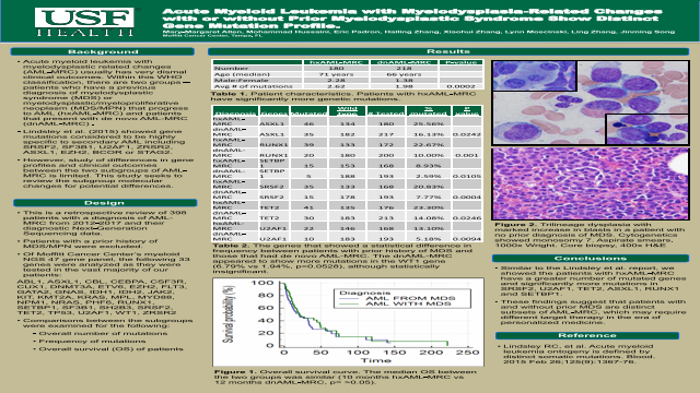 Acute Myeloid Leukemia with Myelodysplasia-Related Changes with or without Prior Myelodysplastic Syndrome Show Distinct Gene Mutation Profile.