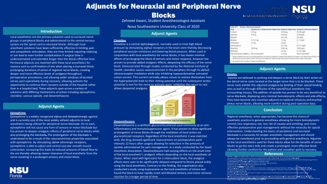 Adjuncts For Neuraxial And Peripheral Nerve Blocks