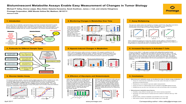 Bioluminescent Metabolite Assays Enable Easy Measurement of Changes in Tumor Biology
