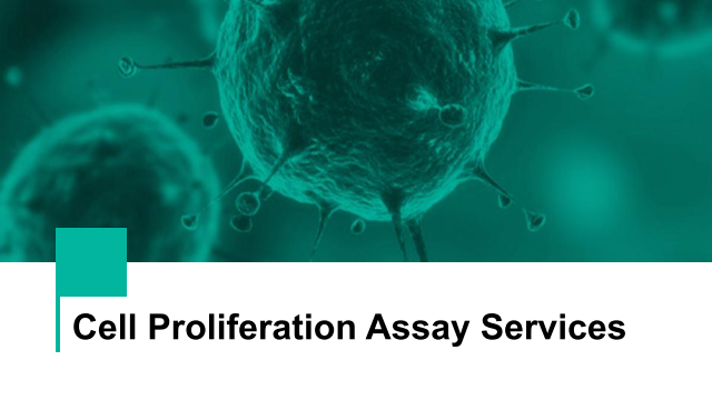 Cell Proliferation Assay Services