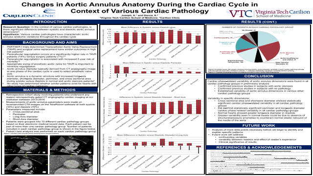 Changes in Aortic Annulus Anatomy during Cardiac Cycle in the Context of Various Cardiac Pathologies