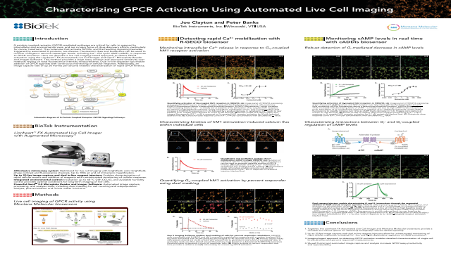 Characterizing GPCR Activation Using Automated Live Cell Imaging