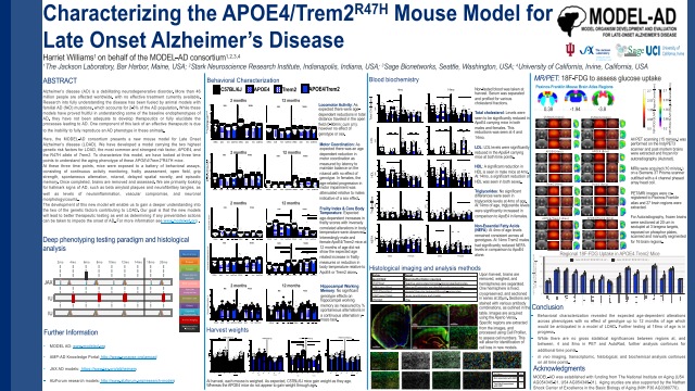 Characterizing the APOE4/Trem2R47H Mouse Model for Late Onset Alzheimer's Disease