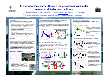Cycling of organic matter through the pelagic food web under warmer acidified ocean conditions