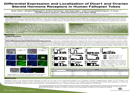Differential Expression and Localization of Dicer1 and Ovarian Steroid Hormone Receptors in Human Fallopian Tubes