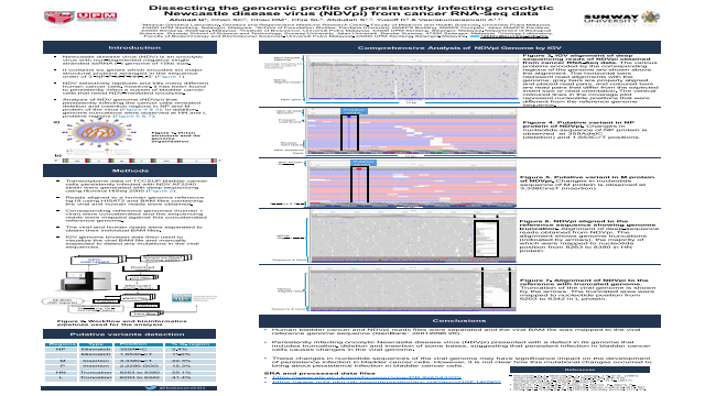 Dissecting the genomic profile of persistently infecting oncolytic Newcastle disease virus (NDVpi) from cancer RNA-Seq data
