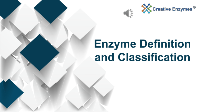 Enzyme Definition and Classification