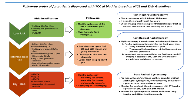 Follow-up protocol for patient diagnosed with TCC of bladder  based on NICE and EAU  Guidelines