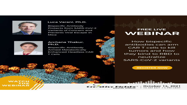 Free Webinar: Harnessing the Power of Bispecific Antibodies