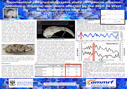 Geochemical and crystallographic study of Tridacna maxima (Mollusca: Bivalve) specimens affected by the 2010-11 West Australian marine heat wave