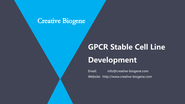 GPCR Stable Cell Line