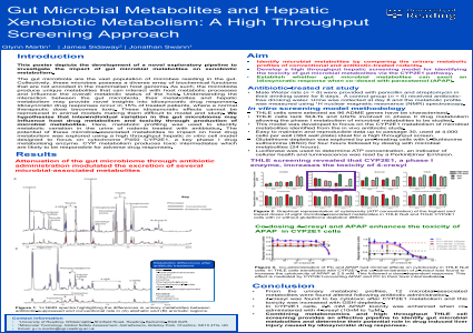 Gut Microbial Metabolites and Hepatic Xenobiotic Metabolism: A High Throughput Screening Approach