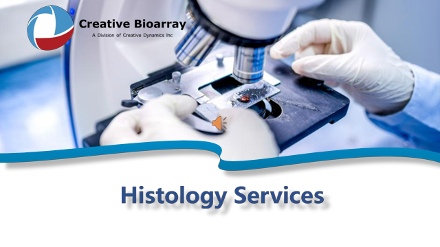 Histology Services