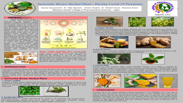 Immunity Buster Herbal Plant: During Covid-19 Pandemic