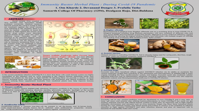 Immunity Buster Herbal Plant : During Covid-19 Pandemic