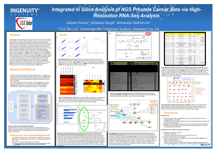 Integrated In Silico Analysis of NGS Prostate Cancer Data via High-Resolution RNA-Seq Analysis