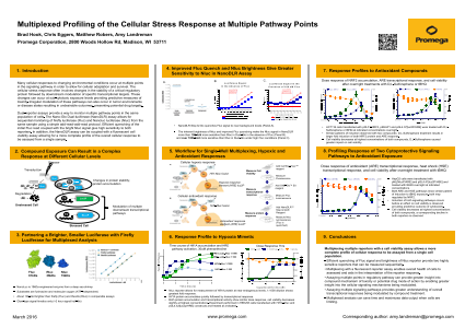 Multiplexed Profiling of the Cellular Stress Response at Multiple Pathway Points