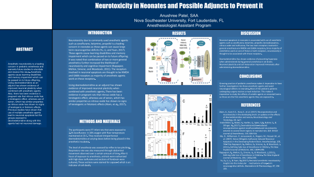 Neurotoxicity in Neonates and Possible Adjuncts to Prevent it