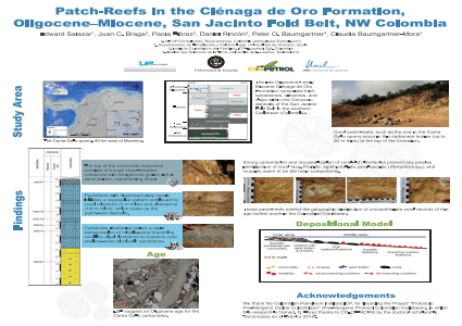 Patch-Reefs in the Ciénaga de Oro Formation (Oligocene–Miocene, San Jacinto Fold Belt,  NW Colombia)