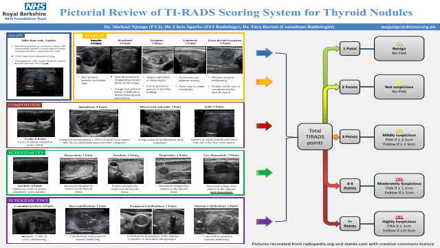 Pictorial Review of TI-RADS Scoring System for Thyroid Nodules