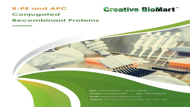 R-PE and APC Conjugated Recombinant Proteins