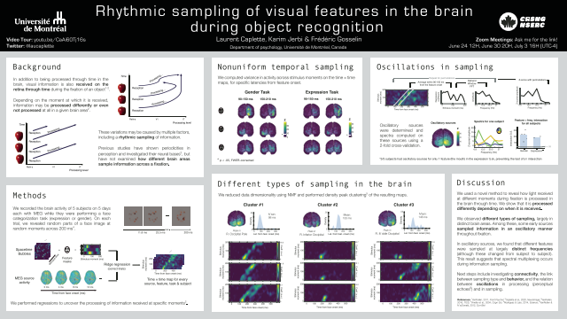 Rhythmic sampling of visual features in the brain during object recognition
