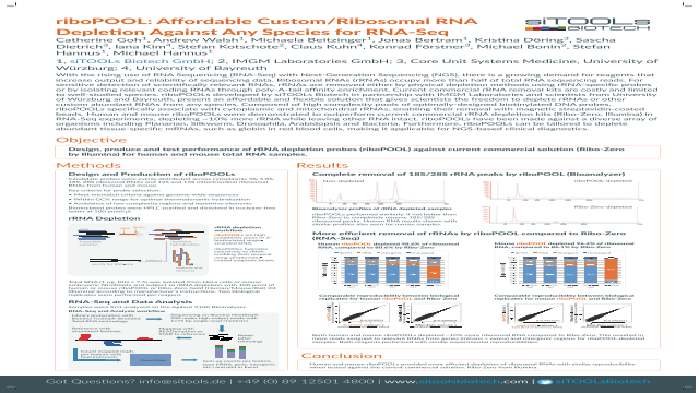 riboPOOL: Affordable Custom/Ribosomal RNA Depletion Against Any Species for RNA-Seq