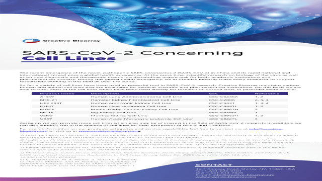 SARS-CoV-2 Concerning Cell Lines