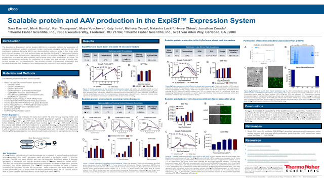 Scalable protein and AAV production in the ExpiSf™ Expression System