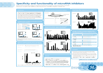 Specificity and functionality of microRNA inhibitors