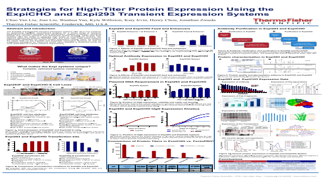 Strategies for High-Titer Protein Expression Using the ExpiCHO and Expi293 Transient Expression Systems