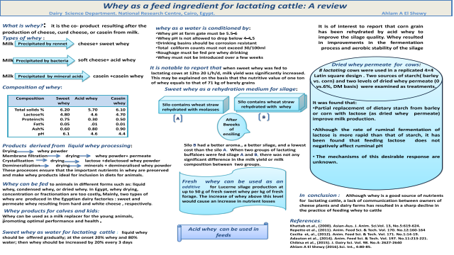 Whey as a feed ingredient for lactating cattle: A review
