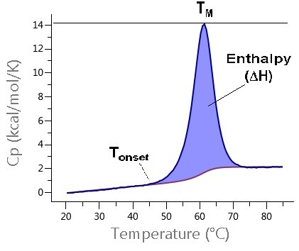 figure 2: dsc data is presented in the form of a thermogram, a plot of  specific heat capacity against temperature, with protein unfolding  initially