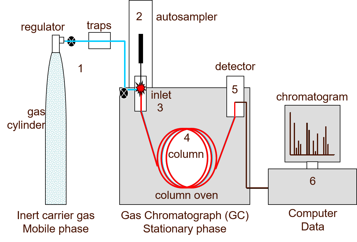 Gas Chromatography – How a Gas Chromatography Machine Works, How To Read a  Chromatograph and GCxGC | Technology NetworksTechnology Networks
