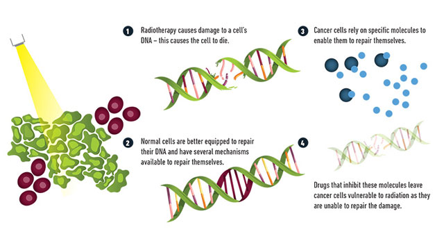 Enhancing the effects of radiotherapy using drugs