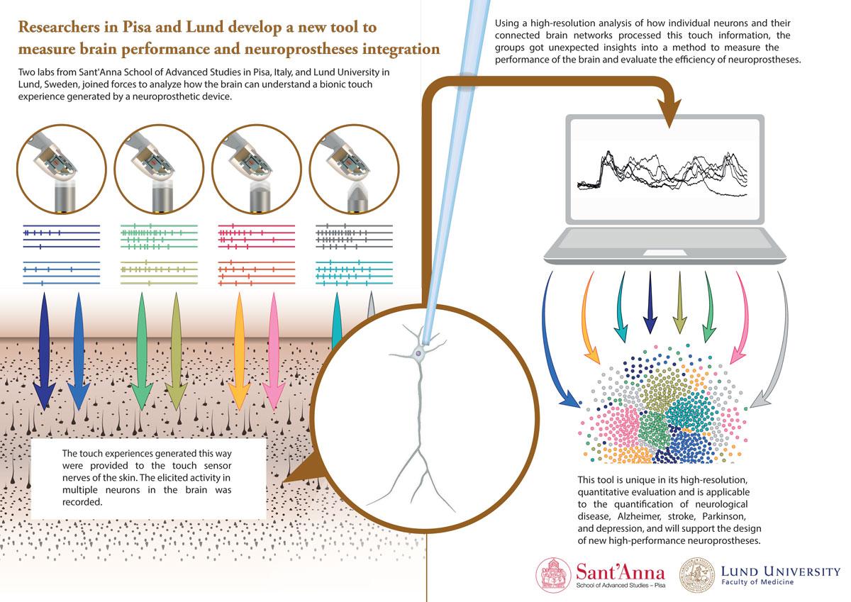 Neuroprostheses