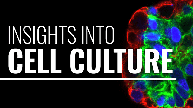 Insights Into Cell Culture