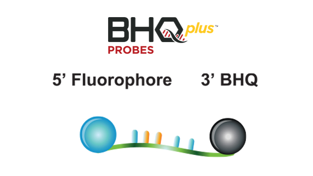 BHQplus® Probes – Precise by design