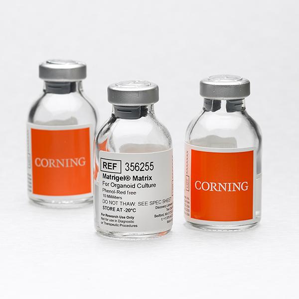 Corning® Matrigel® Matrix for Mrganoid Multure