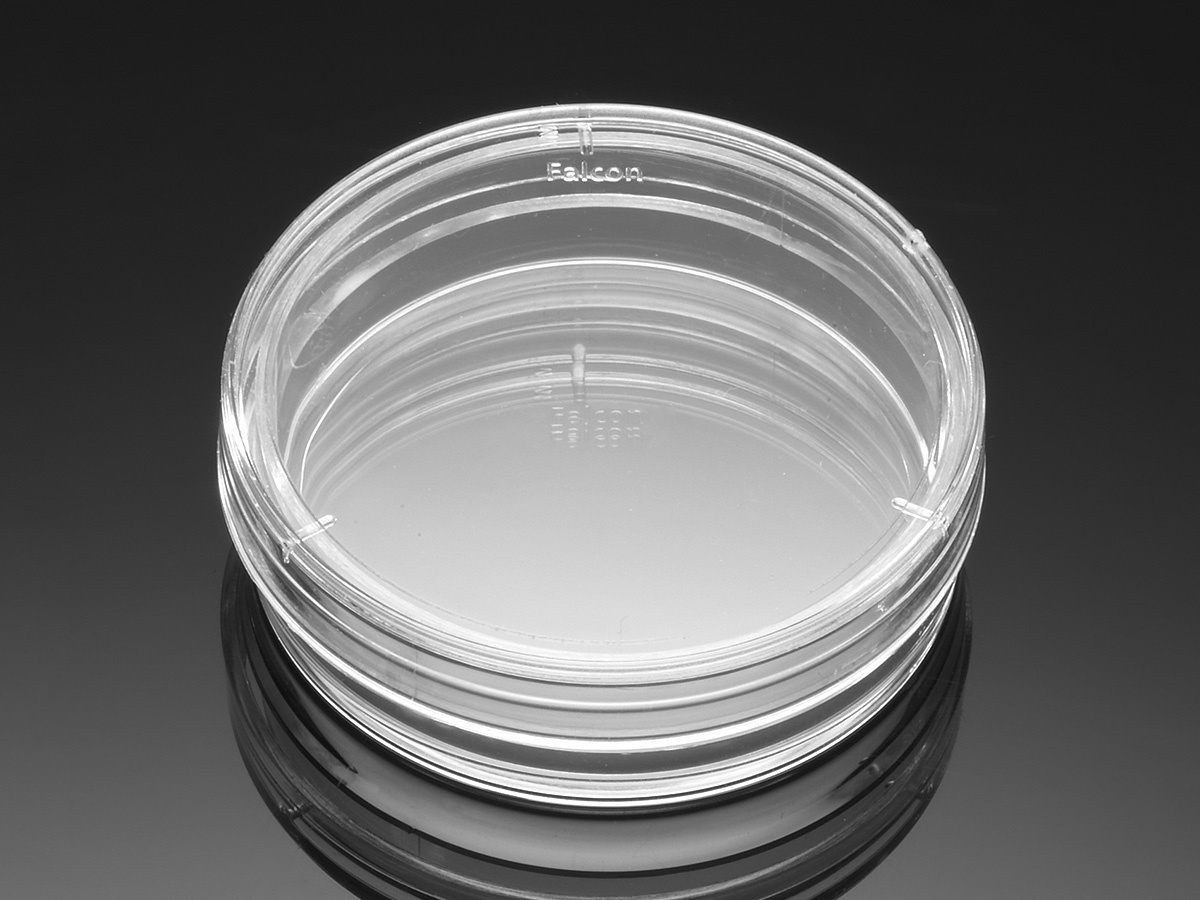 Falcon® 35 mm TC-treated Easy-Grip Style Cell Culture Dish