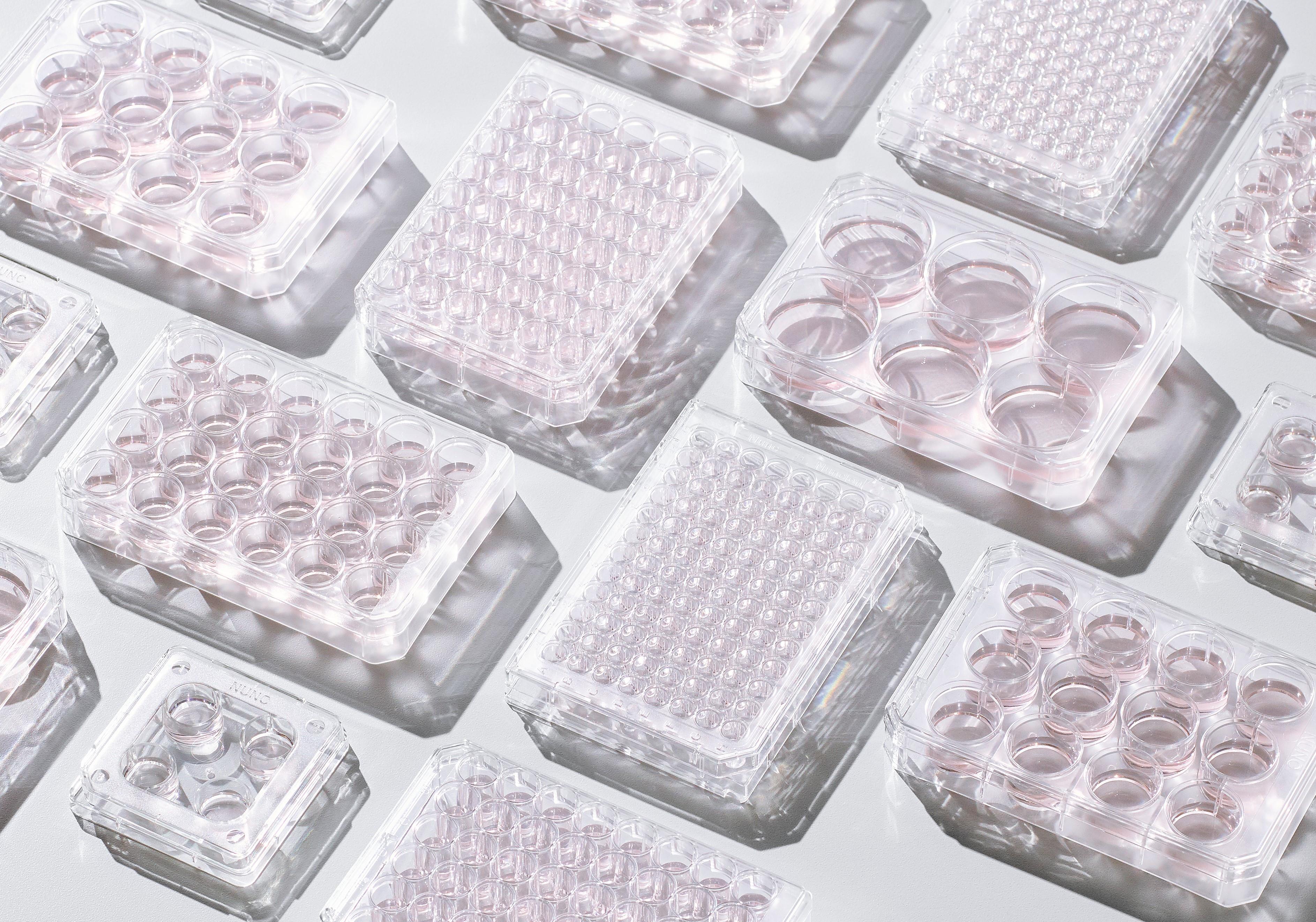 Nunc UpCell Cell Culture Plastics