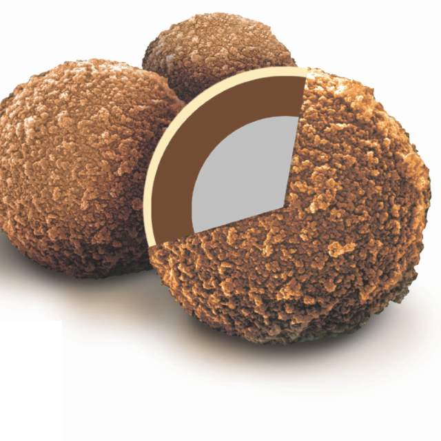 Sera-MagTM Oligo(dT)-Coated Magnetic Particles