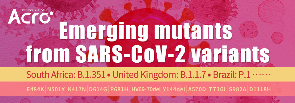 Spike Mutants from SARS-CoV-2 Variant South Africa: B.1.351, UK: B.1.1.7 and more