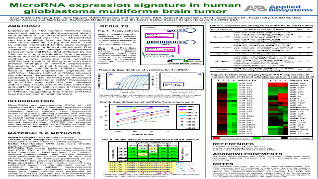 MicroRNA Expression Signature in Human Glioblastoma Multiforme Brain Tumor