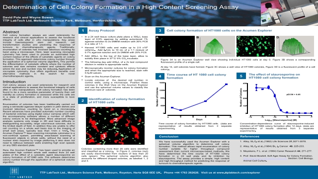 Determination of Cell Colony Formation in a High Content Screening Assay