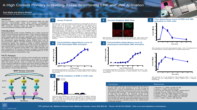 A High Content Primary Screening Assay Determining ERK and JNK Activation