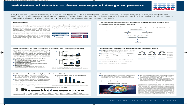 Validation of siRNAs - From Conceptual Design to Process