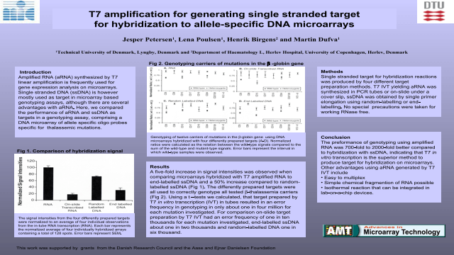 T7 Amplification for Generating Single Stranded Target for Hybridization to Allele-Specific DNA Microarrays