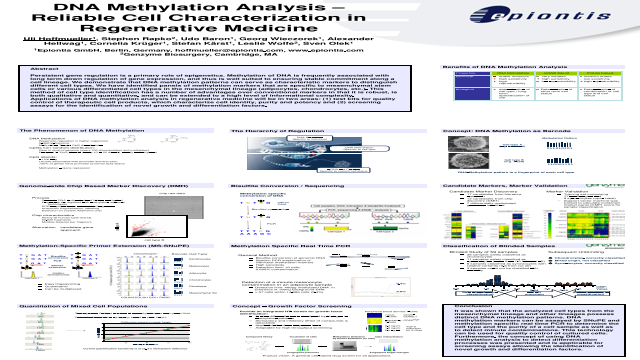 DNA Methylation Analysis – Reliable Cell Characterization in Regenerative Medicine